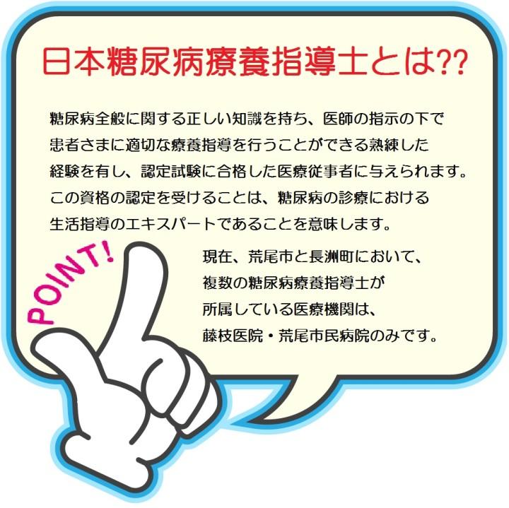 日本糖尿病療養指導士とは